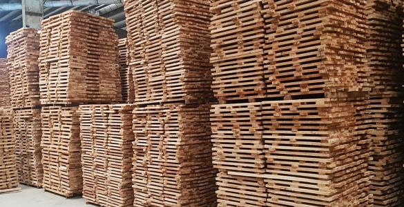 Xưởng 2 gỗ Phúc Thịnh Bình Phước